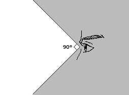 ruang penglihatan manusia