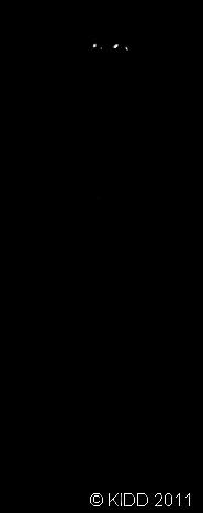 cikAdik Monochrome