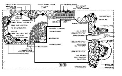 Front & Back landscape plan