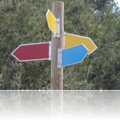cruce_de_caminos
