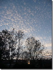 White on white and mackerel skies 006