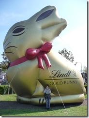Evil bunny 002