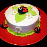 Lady Bug Cake 2-20-10 053.jpg