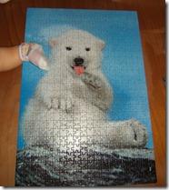 26-10-09 Il puzzle è finito... (8)