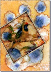 lemachigallery bird dreams aceo
