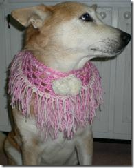daisy pink white valentine neckwear 500p