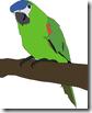 thumb_parrot_large