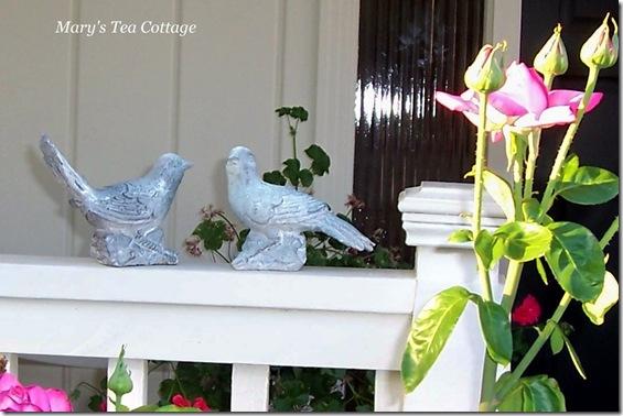 birds on railing