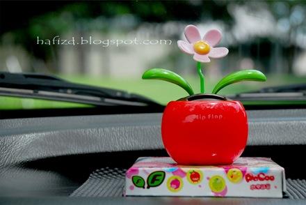 bunga-flip-flop