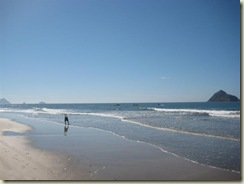 Mazatlan Beach Golden Zone 1 (Small)