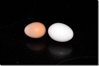it's an egg! 080210  (13)
