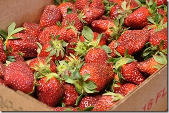 strawberry baking 032711 (61)