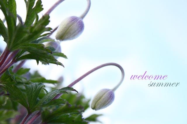 welcomesummer