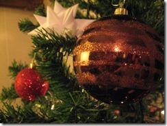 Christmas 2009 032