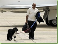 resized_obama_dog_bo_2