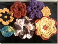 2011-01-04 Crochet 002