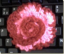 2011-01-04 Crochet 007