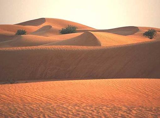 Desert Sand Dunes, South Africa