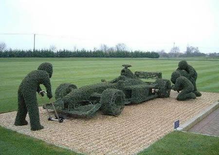 a96735_car-grass2