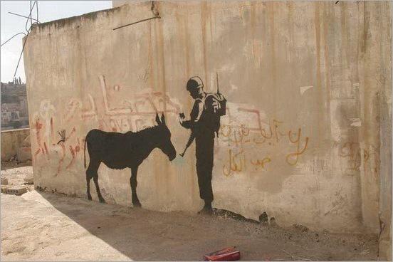 funny moment donkey life 03