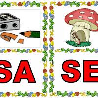 SA-SE.jpg