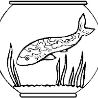 fish in bowl.jpg
