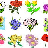 loto flores-.jpg