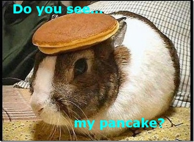 Funny Pictures: Can you see the pancake?