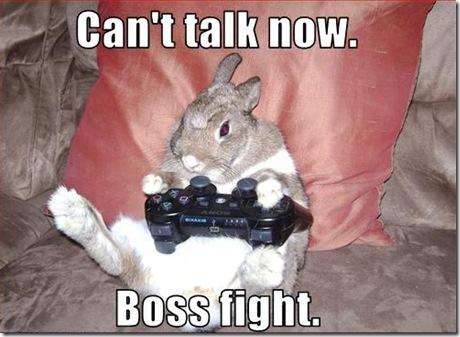 funny bunny. Funny Rabbit