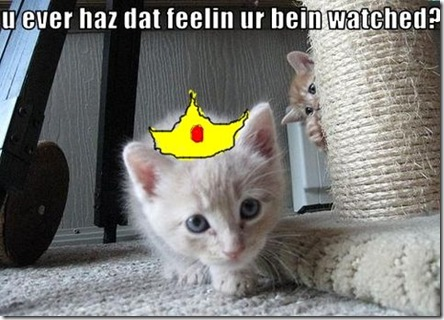 Funny Pictures: Little kitty is watching the prince