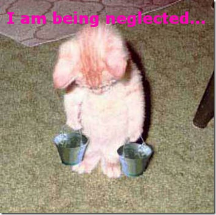 Funny Pictures: I am neglected... again!