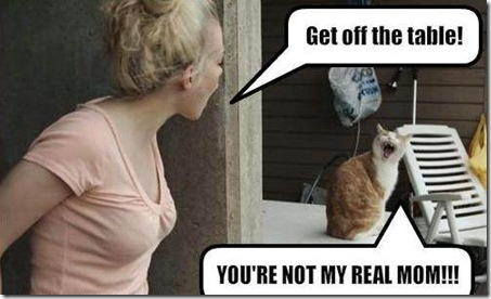Funny Pictures: (Funny Animals and Human - not my real mom!)