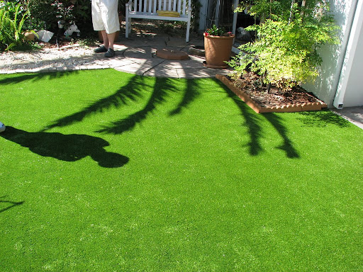 synthetic grass home