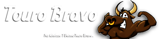 Bem Vindo ao Touro Bravo .