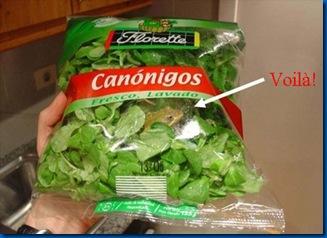 save frog ensalada