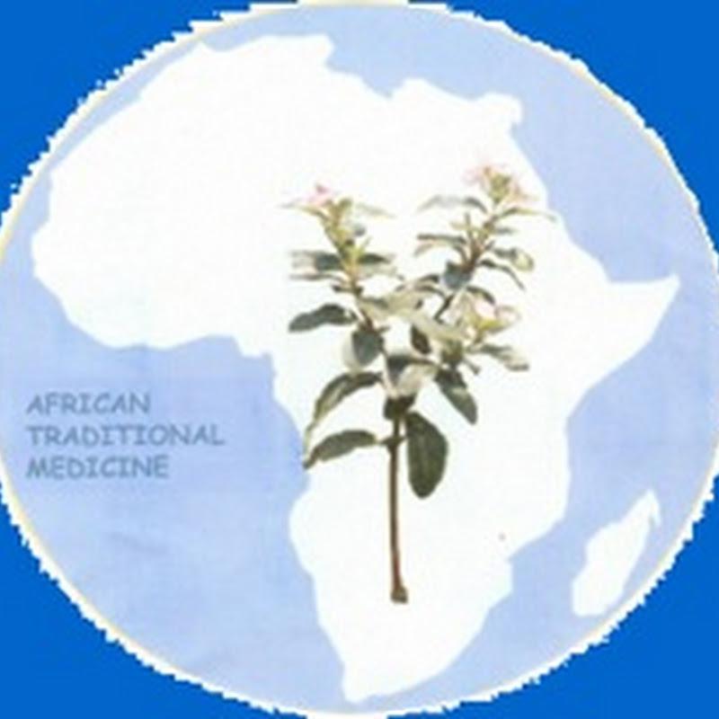 Día de la Medicina Tradicional Africana