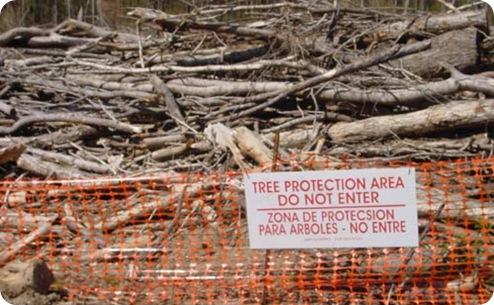 proteccion arboles