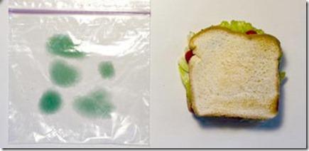 sanwich 2