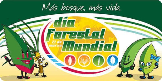 dia forestal