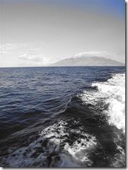 Maui Snorkeling_01 (1) (Medium)