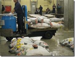 Tsukiji Fish Market_07 [1600x1200]