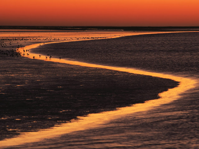 Rivages Wadden%20Island%20Estuary%20at%20Sunset%2C%20The%20Netherlands