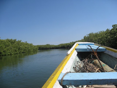 Boat on safari on the Sine River in Senegal
