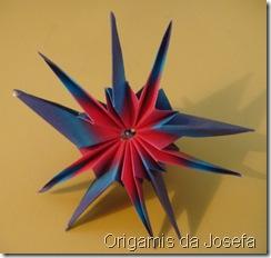 Origami 172
