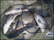 рыбалка Садок