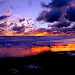 Beautyful Landscape (2).jpg