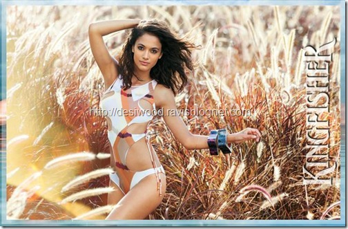 kingfisher_calendar_2011-1