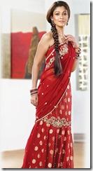 Nayanthara in pothys Designer Sarees