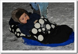 Buggysnuggle-sledge-2