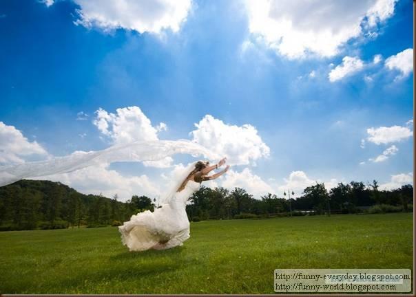 weddings (5)